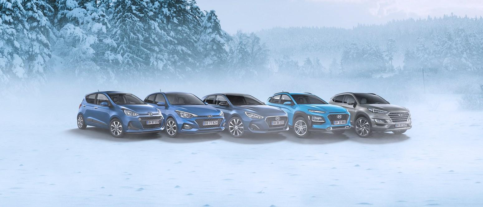 5 tips til at vedligeholde din bil i vinterkulden