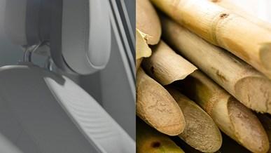 Planteprodukter i både sæder og tæpper