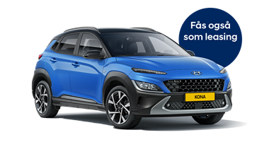 Hyundai KONA Van